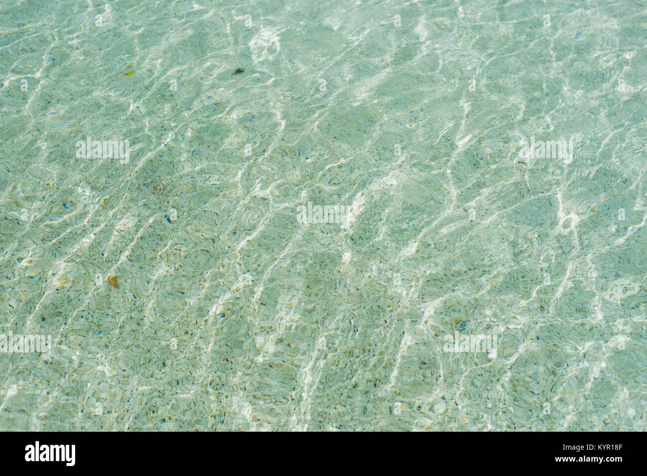 Glistening water, sparkling, sunshine, blue, clear, at the pool, Riverway, Townsville, Queensland, Australia - Stock Image