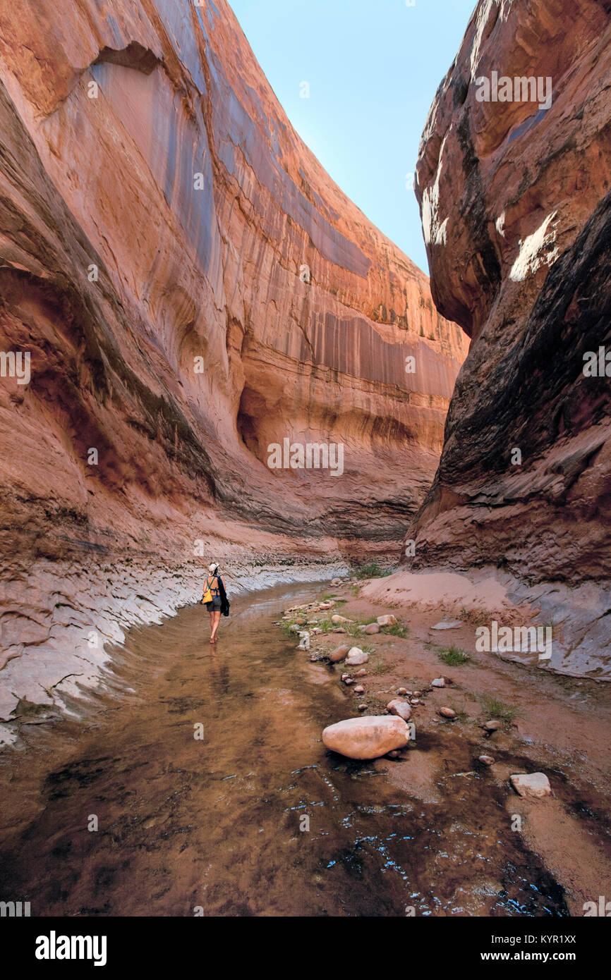 Exploring the side canyons of Glen Canyon and Lake Powell, Glen Canyon National Recreation Area, Arizona - Stock Image