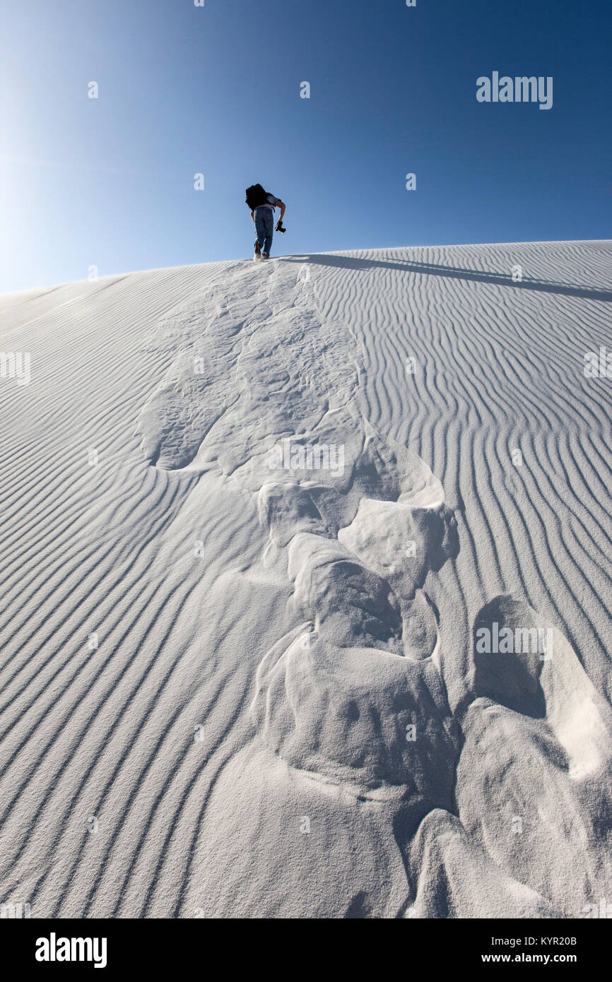 Photographer climbing to the top of a large sand dune, White Sands National Monument, New Mexico - Stock Image