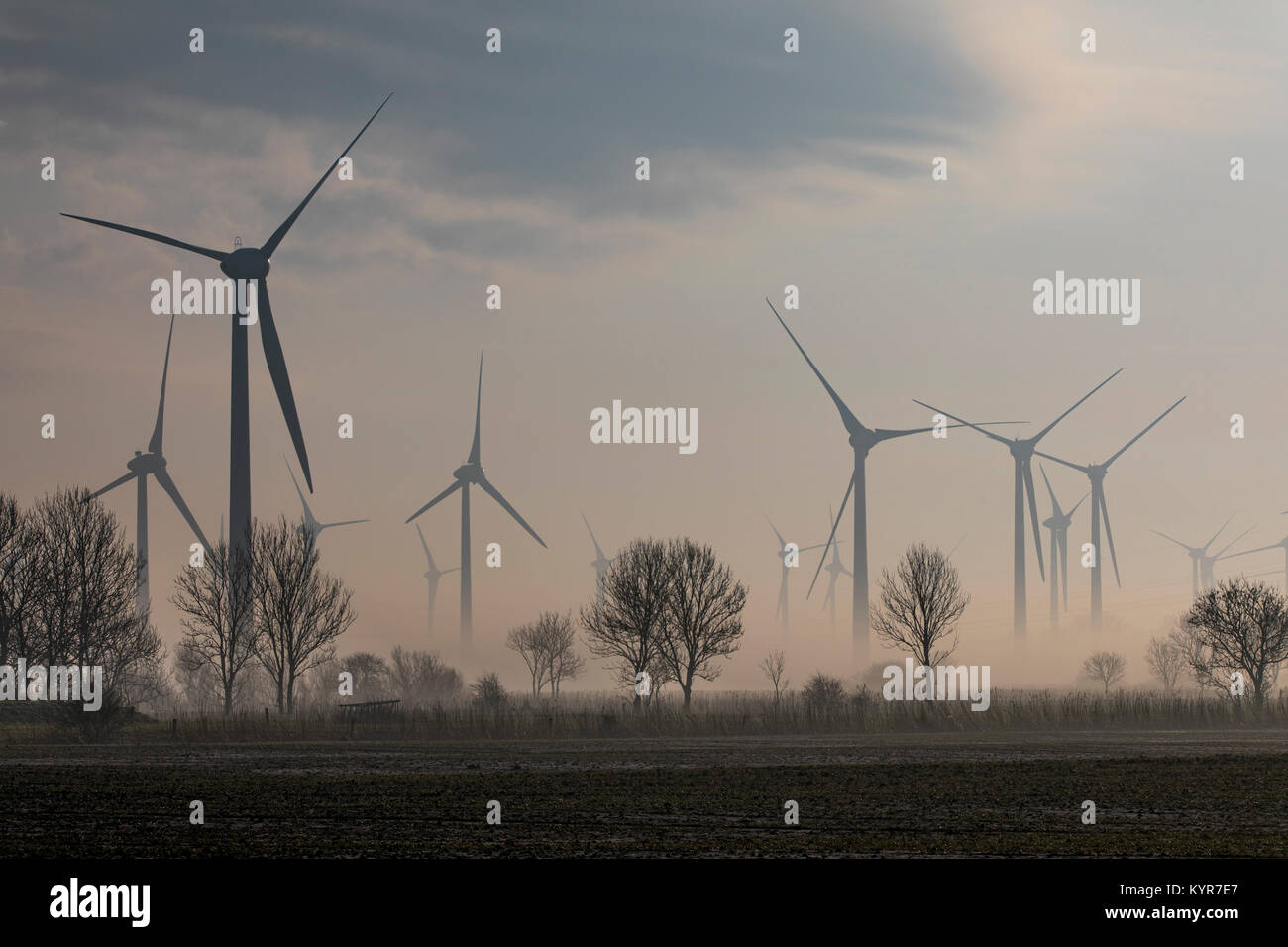 Wind energy plant, wind farm in East Frisia, Lower Saxony, Northern Germany, foggy winter weather, - Stock Image
