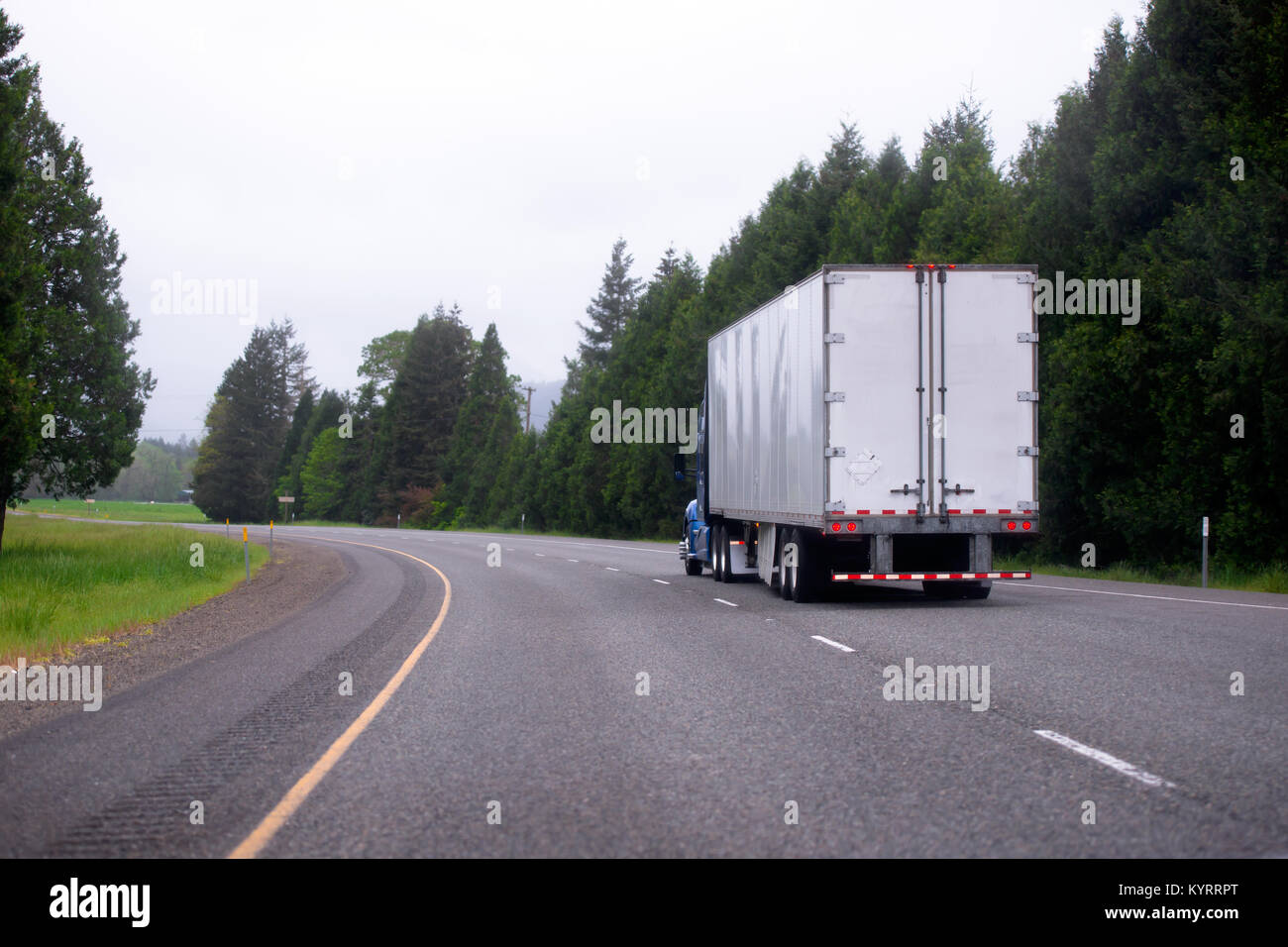 A big rig semi truck with a dry van trailer for long haul freight turn on winding highway with evergreen trees on - Stock Image