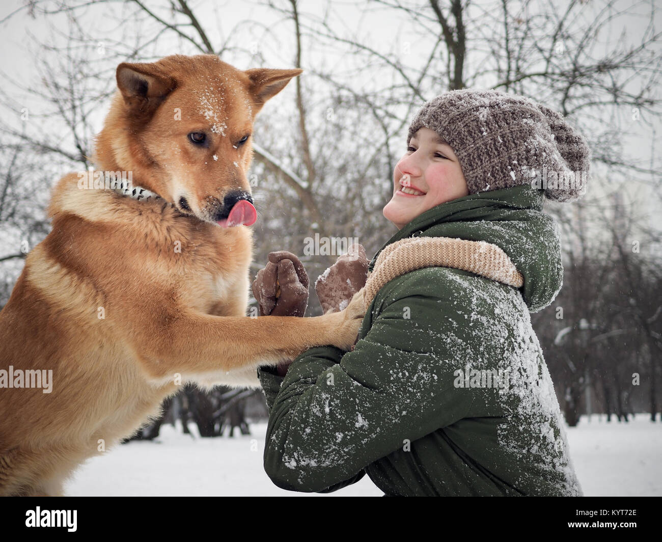 65dc4fe0ce9 People Playing With Pet Dog In Snow Stock Photos   People Playing ...