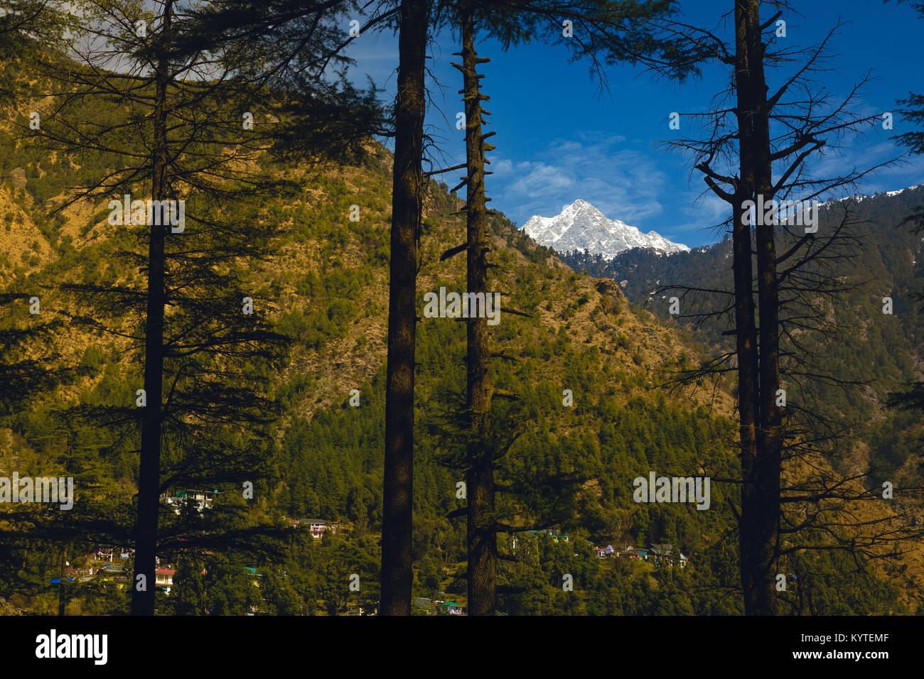 Triund peak in Dhauladhar ranges as seen from Dharamkot, Mcleodganj, Dharamsala, Himachal pradesh, India. Blue skies, - Stock Image