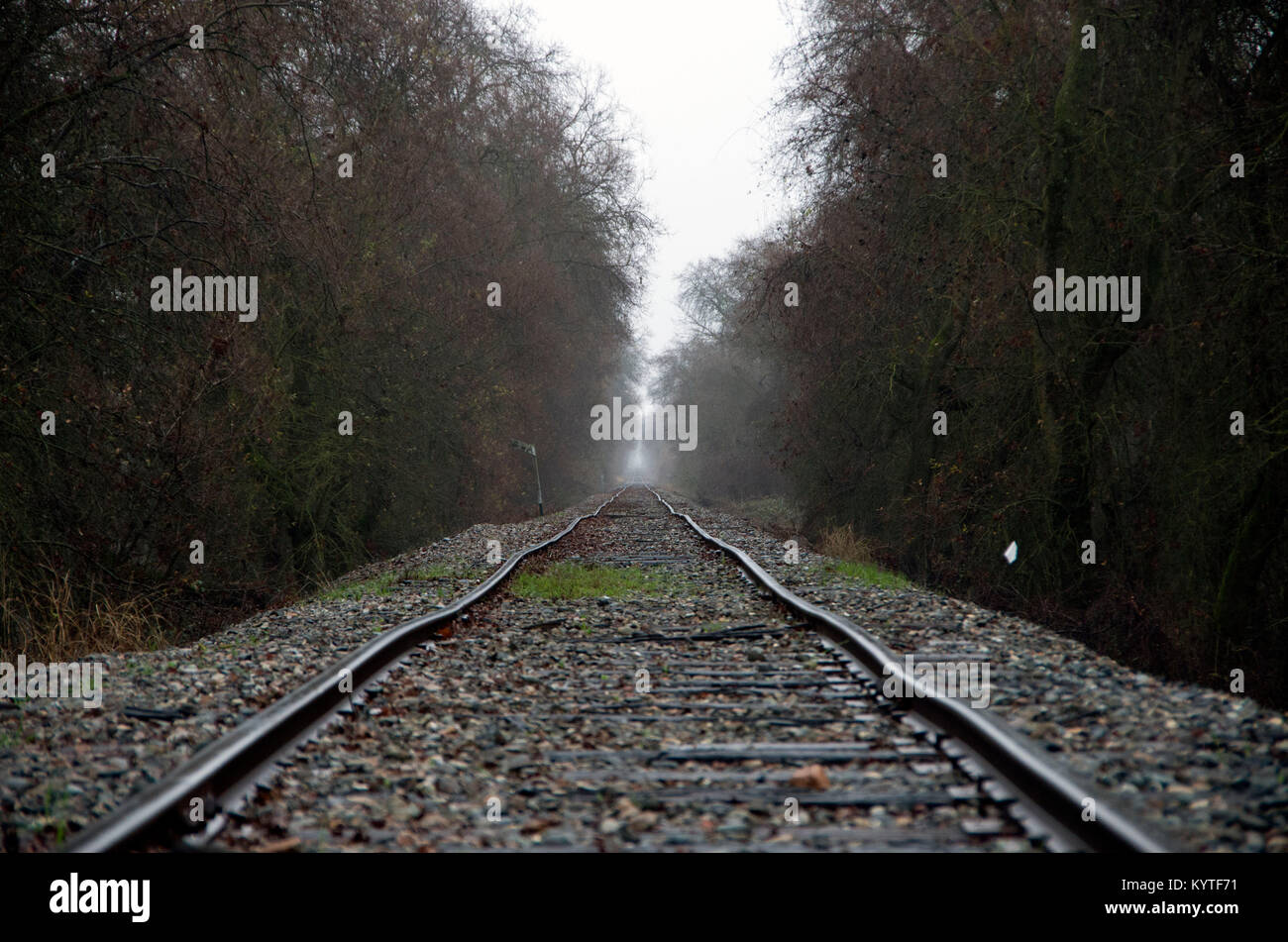 The early morning fog shrouds the distant train tracks. Stock Photo