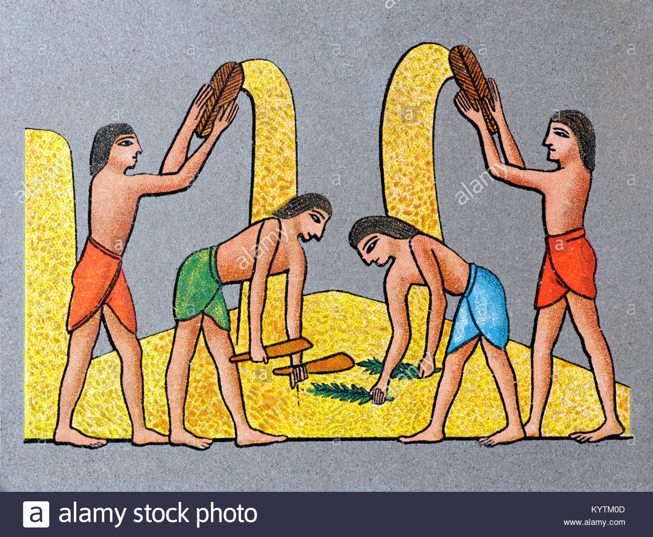 Depiction of ancient Egyptians winnowing corn - Stock Image
