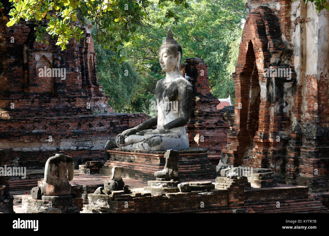 The buddha statue in meditation posture with the sunlight emitting from the sky to illustrate a look of wise, calm, - Stock Image