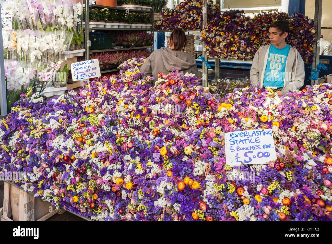 Columbia Road Flower Market stall with traders selling everlasting statice - Stock Image