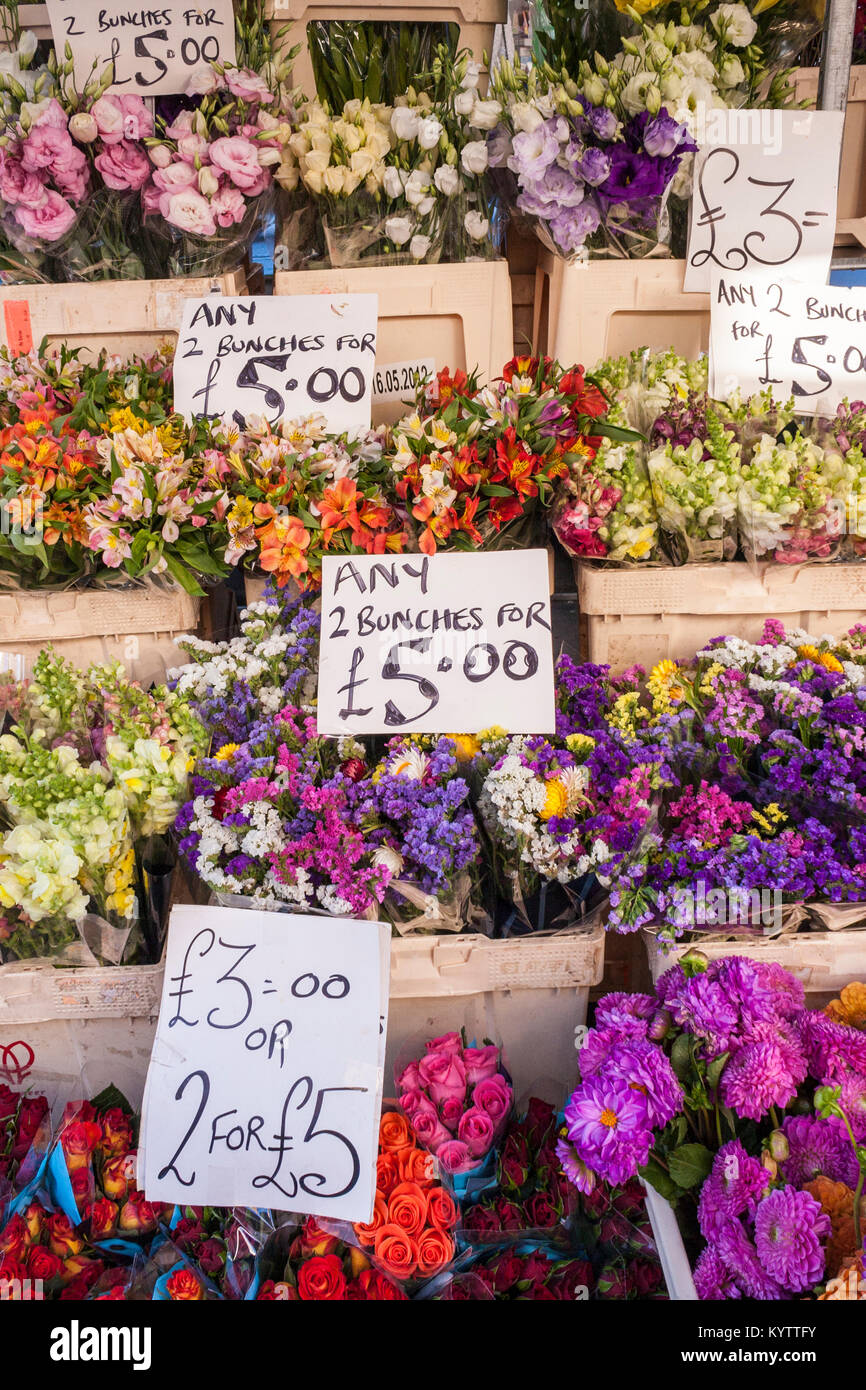 Columbia Road Flower Market stall wihout people - Stock Image