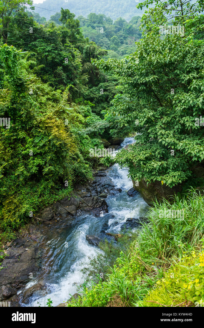 Kerala Forest Stock Photos Kerala Forest Stock Images Alamy