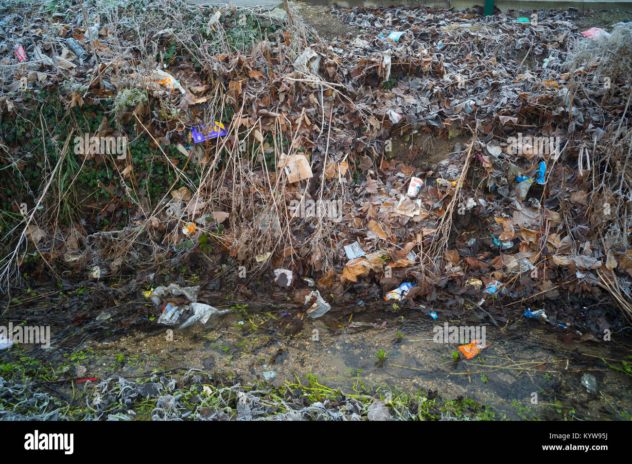 Garbage - Stock Image