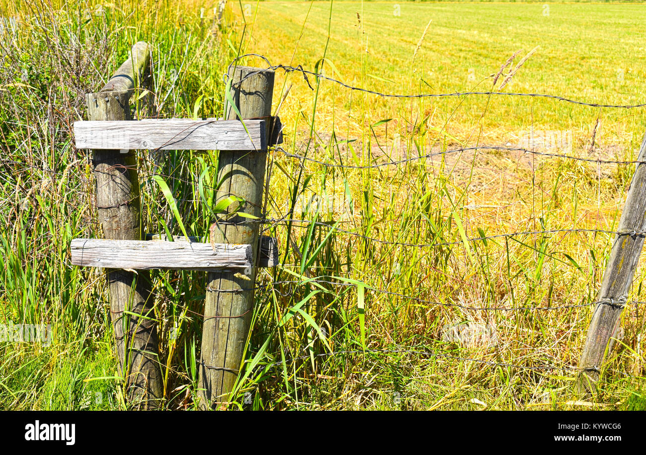 Barb wire fencing in front of an empty field.  The wire is in focus from one post to the other. - Stock Image