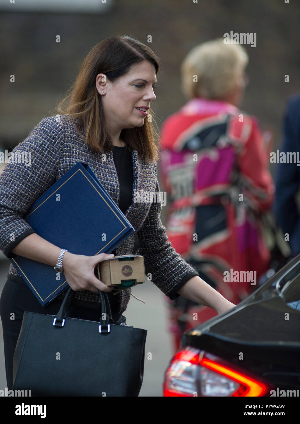 Downing Street, London, UK. 16th Jan, 2018. Government ministers in Downing Street for weekly cabinet meeting. Minister Stock Photo