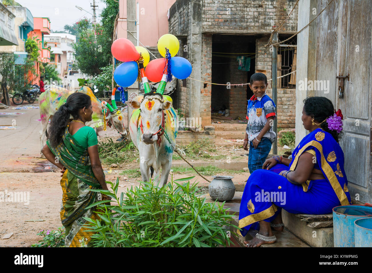 Tamil Nadu, India. 16th Jan, 2018. Pongal, the harvest festival dedicated to the sun, celebrated in the village - Stock Image