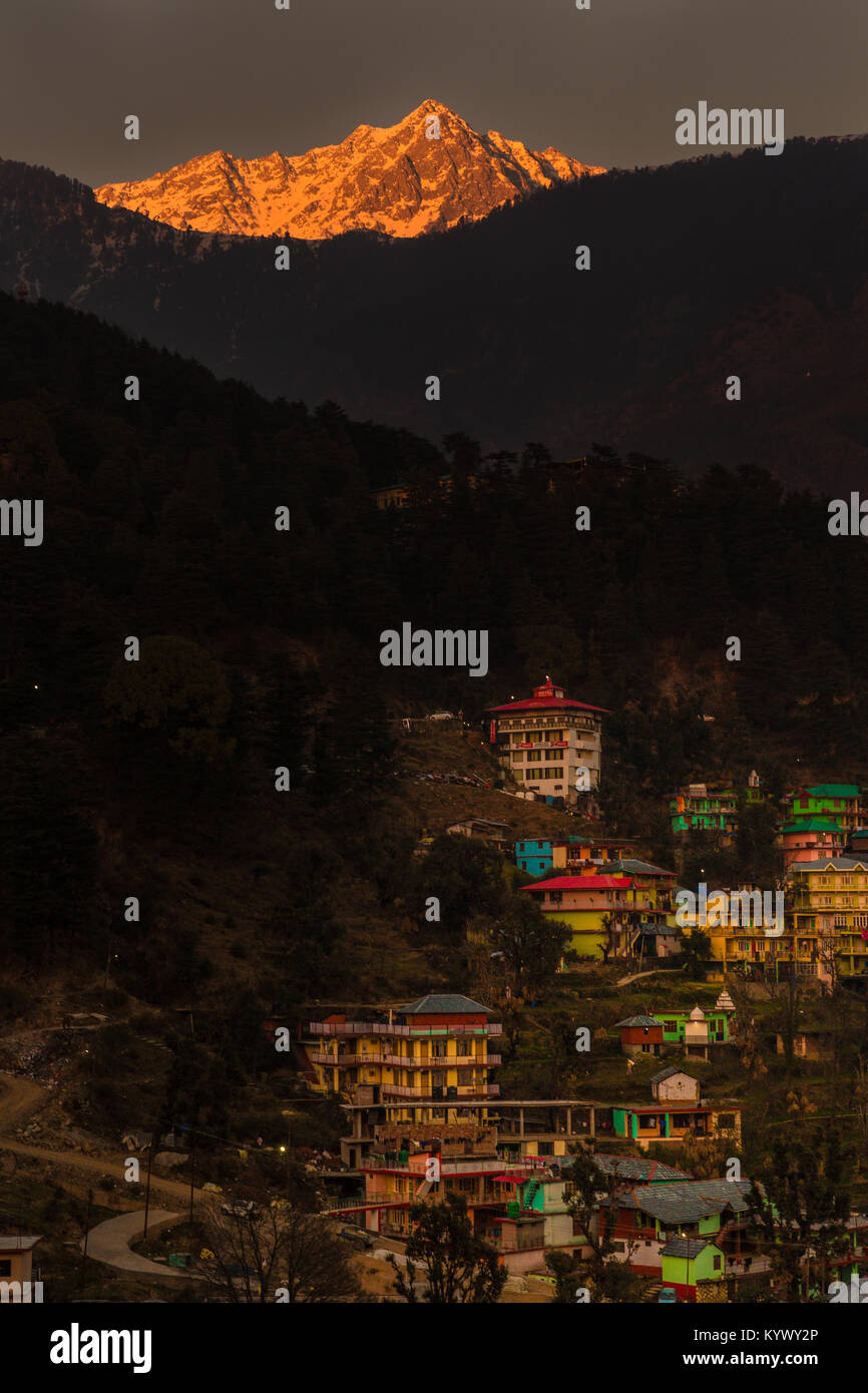 White snow mountains turned golden due to suns rays at golden hour or sunset at Triund, Mcleod ganj, Dharamsala, - Stock Image