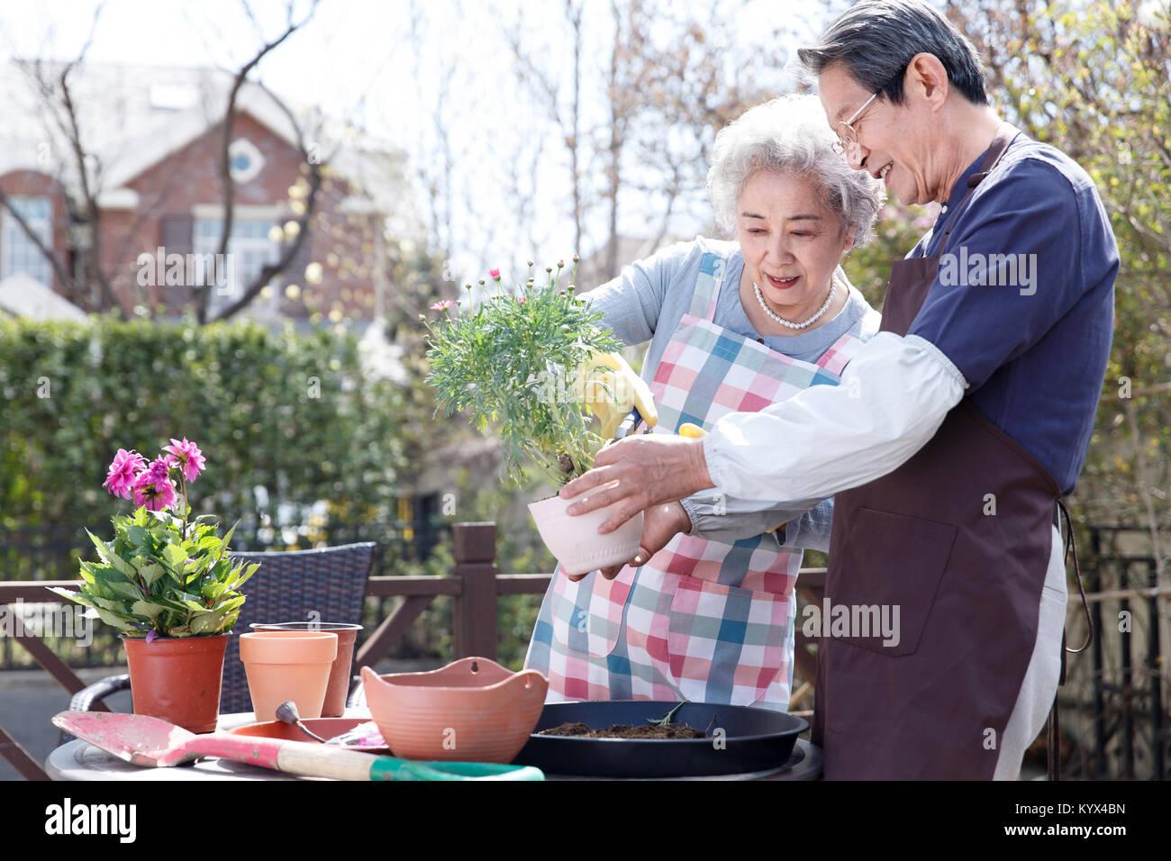 Florida Nigerian Seniors Dating Online Website
