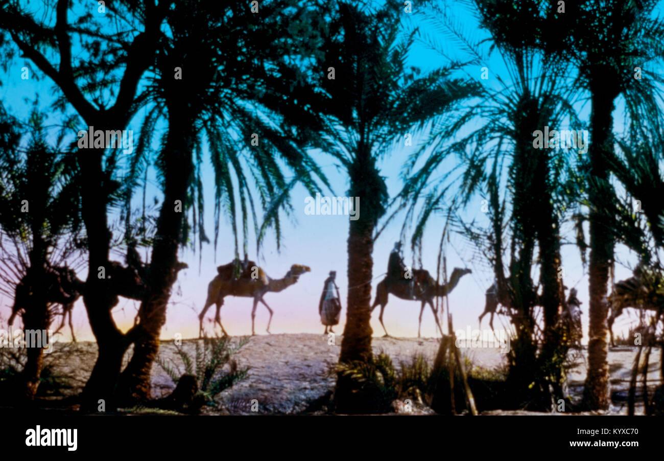 Sinai. Springs of Moses. Exodus 15:23 - Stock Image