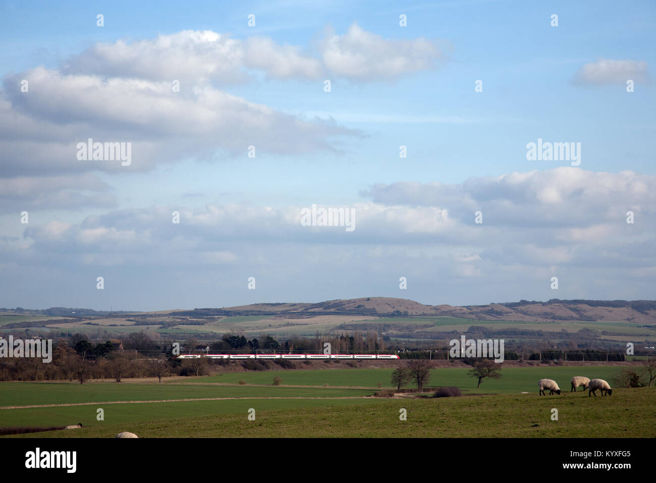 A Virgin Trains Class 390 Pendolino train passes in front of Ivinghoe Beacon with sheep in the foreground. Buckinghamshire, Stock Photo