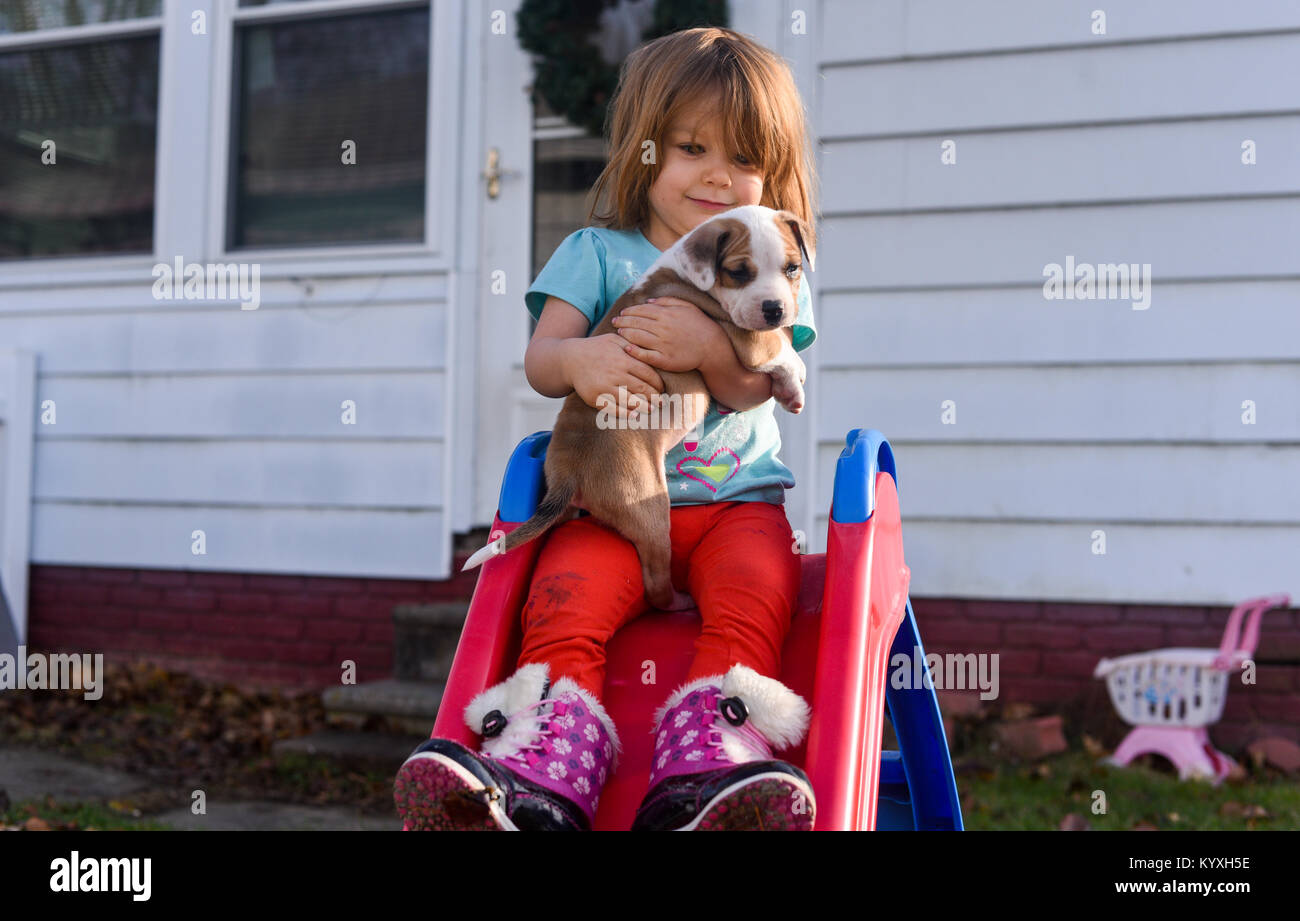 A toddler girl holds a beagle puppy on a red slide in the summer. - Stock Image
