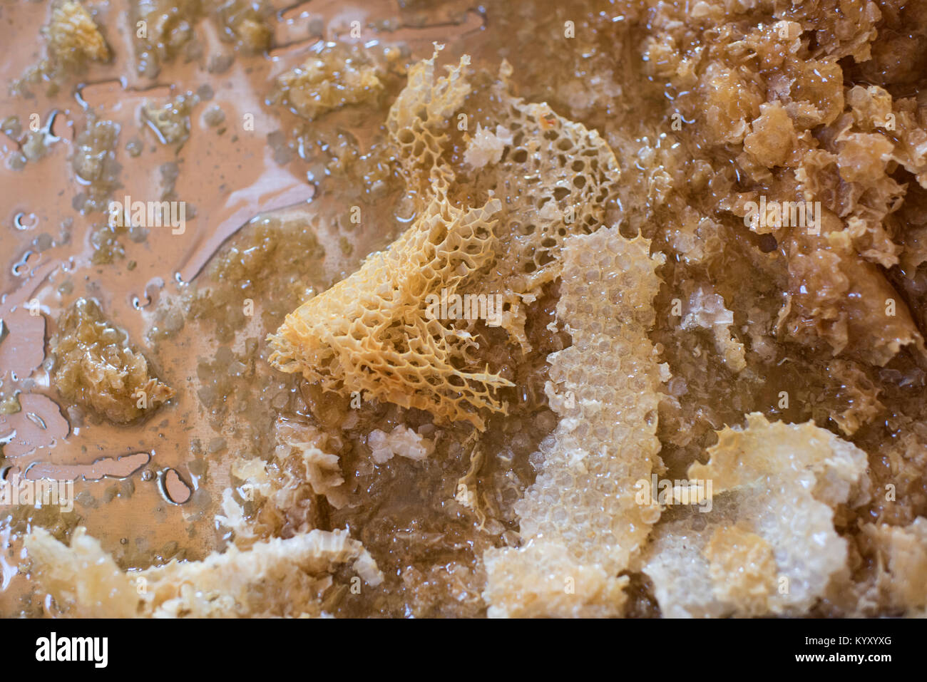 High angle view of honeycomb on metallic structure - Stock Image