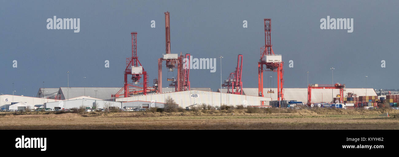 Giant gantry cranes at the Royal Portbury Dock container terminal at Avonmouth in the Bristol Channel in Somerset - Stock Image