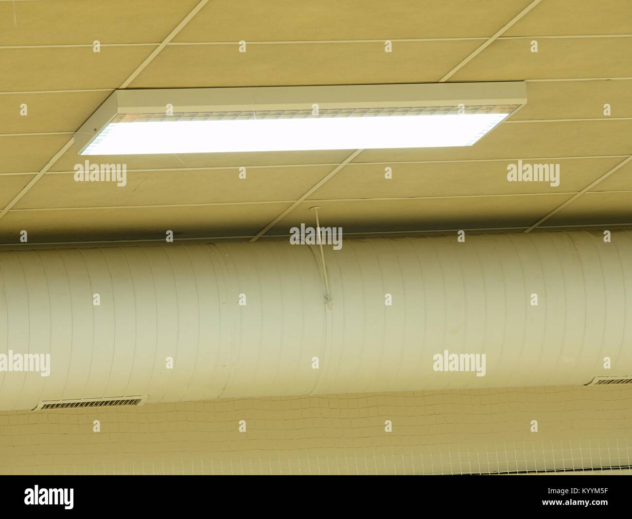 Row of fluorescent lights in an office building. Ceiling and ...