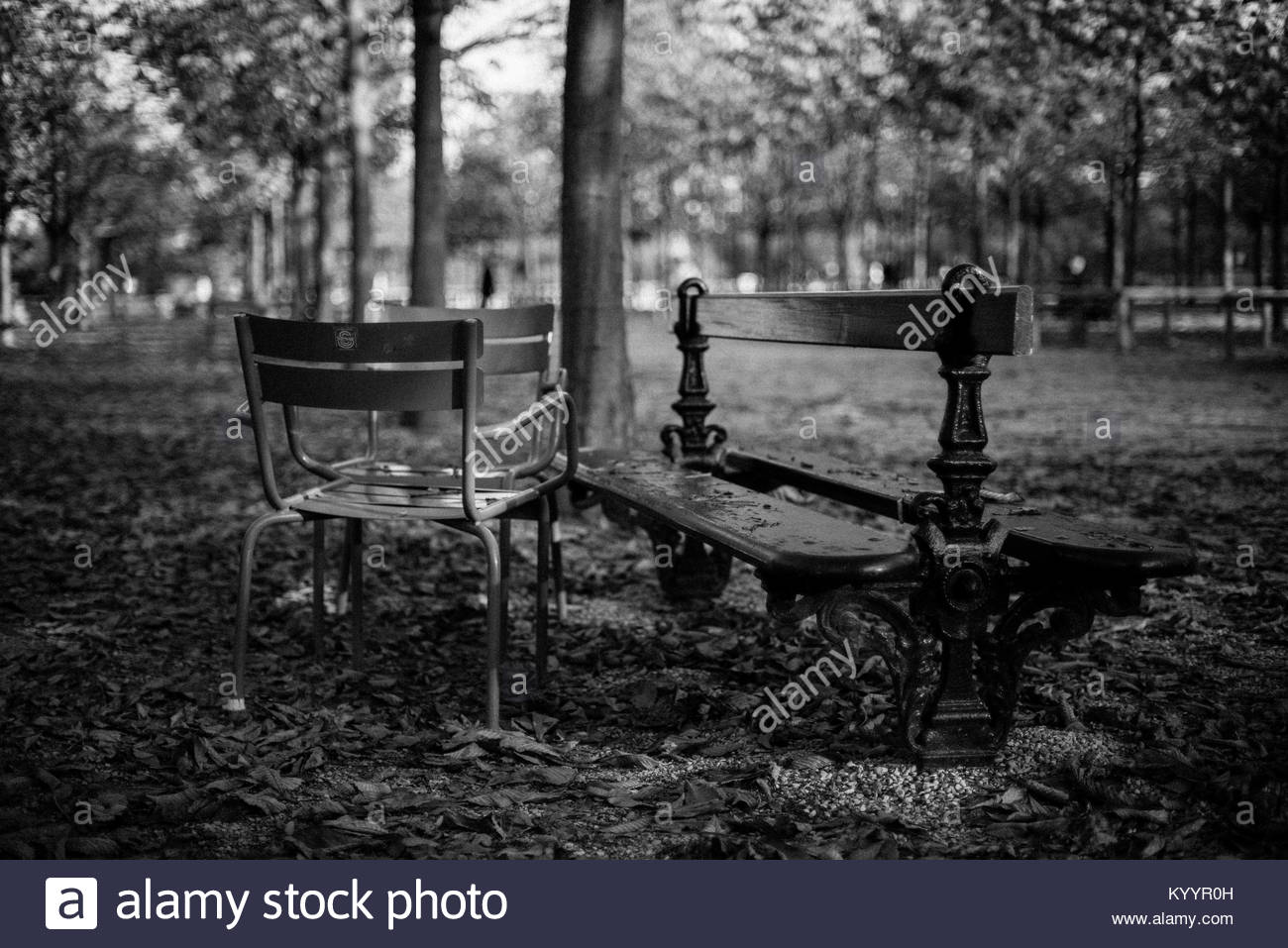 Two chairs and park bench at an autumnal and deserted Jardin du Luxembourg, Paris. Black and white. - Stock Image