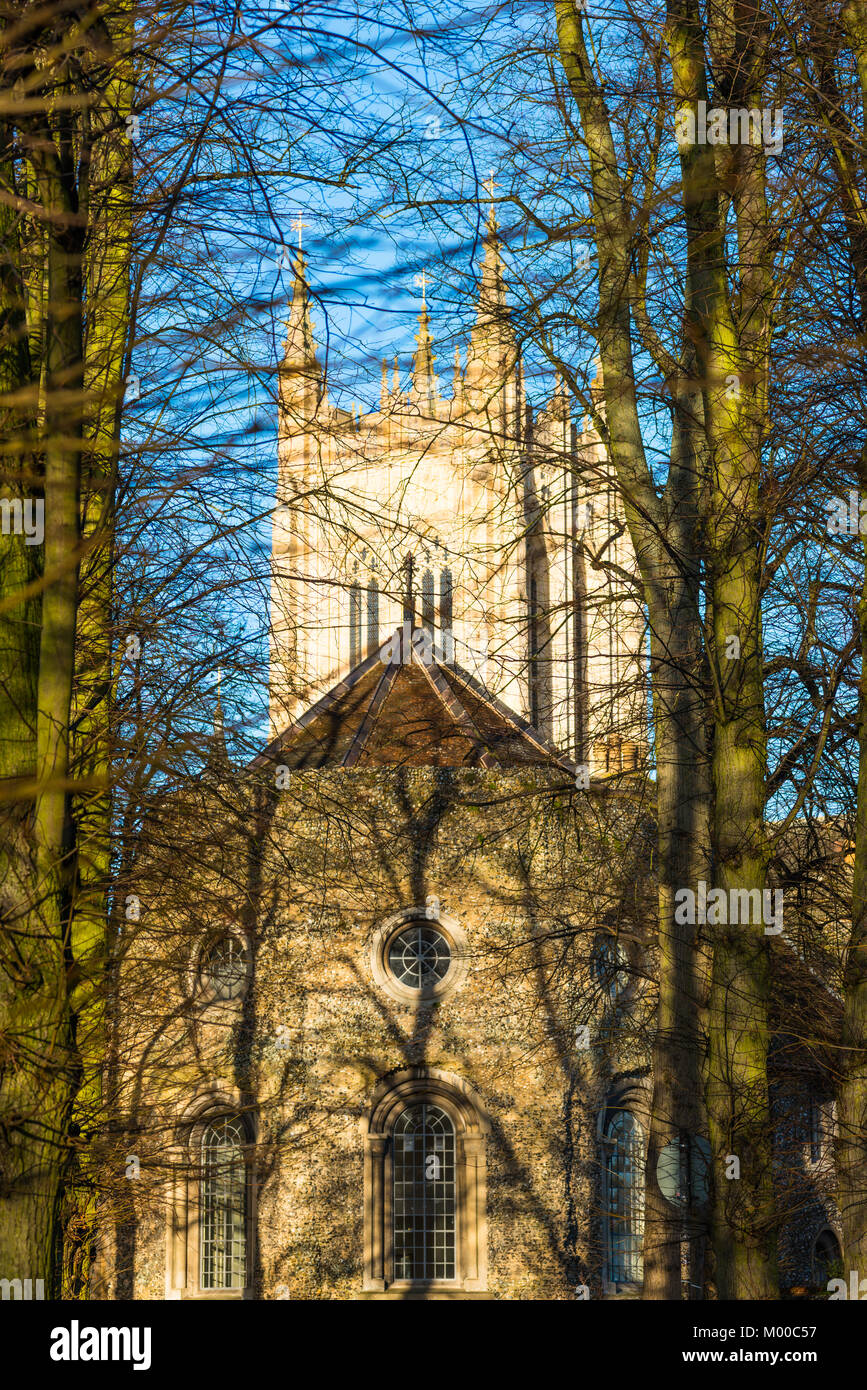 St Edmundsbury Cathedral is the cathedral for the Church of England's Diocese of St Edmundsbury and Ipswich. - Stock Image