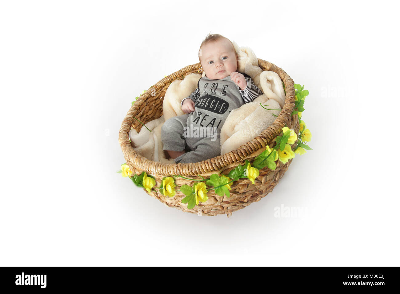 happy 9 week old baby boy in a basket relaxing - Stock Image