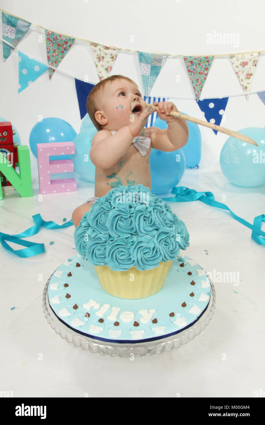 Excellent 1 Year Old Boy Birthday Party Cake Smash Fun Food Stock Photo Funny Birthday Cards Online Alyptdamsfinfo