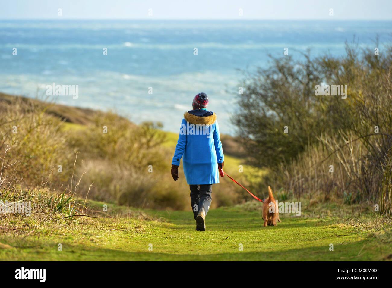 dog walk on cliffs above the coast at Hope Gap, Seaford, UK - Stock Image