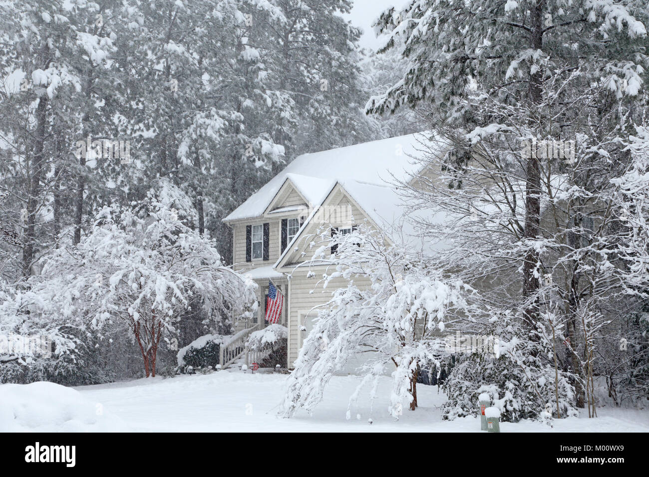 Durham, North Carolina, 17th Jan, 2018. Heavy snowfall in Durham, North Carolina. Credit: Rose-Marie Murray/Alamy Stock Photo