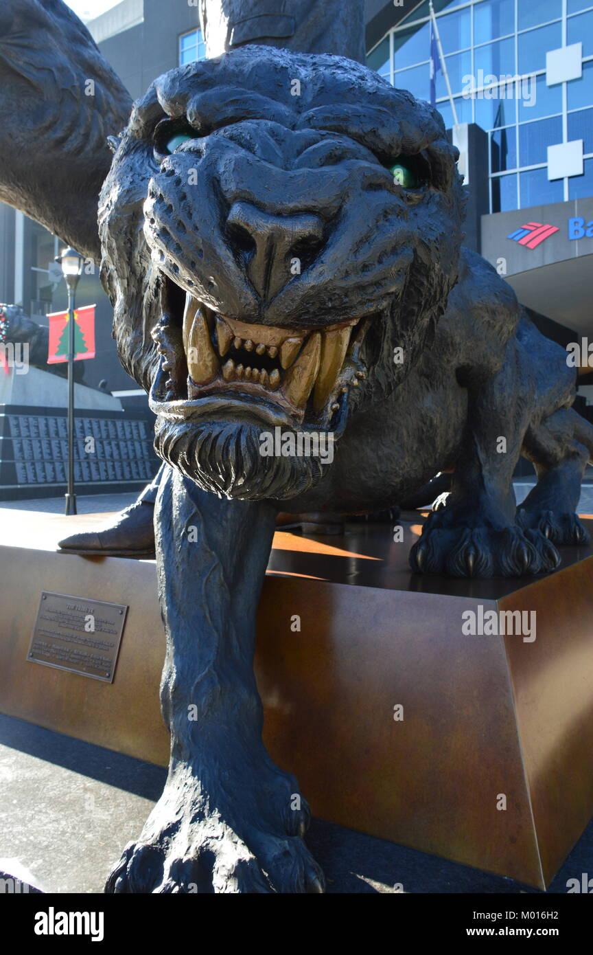 bd4233ec The South Carolina Panthers Stadium Stock Photos & The South ...