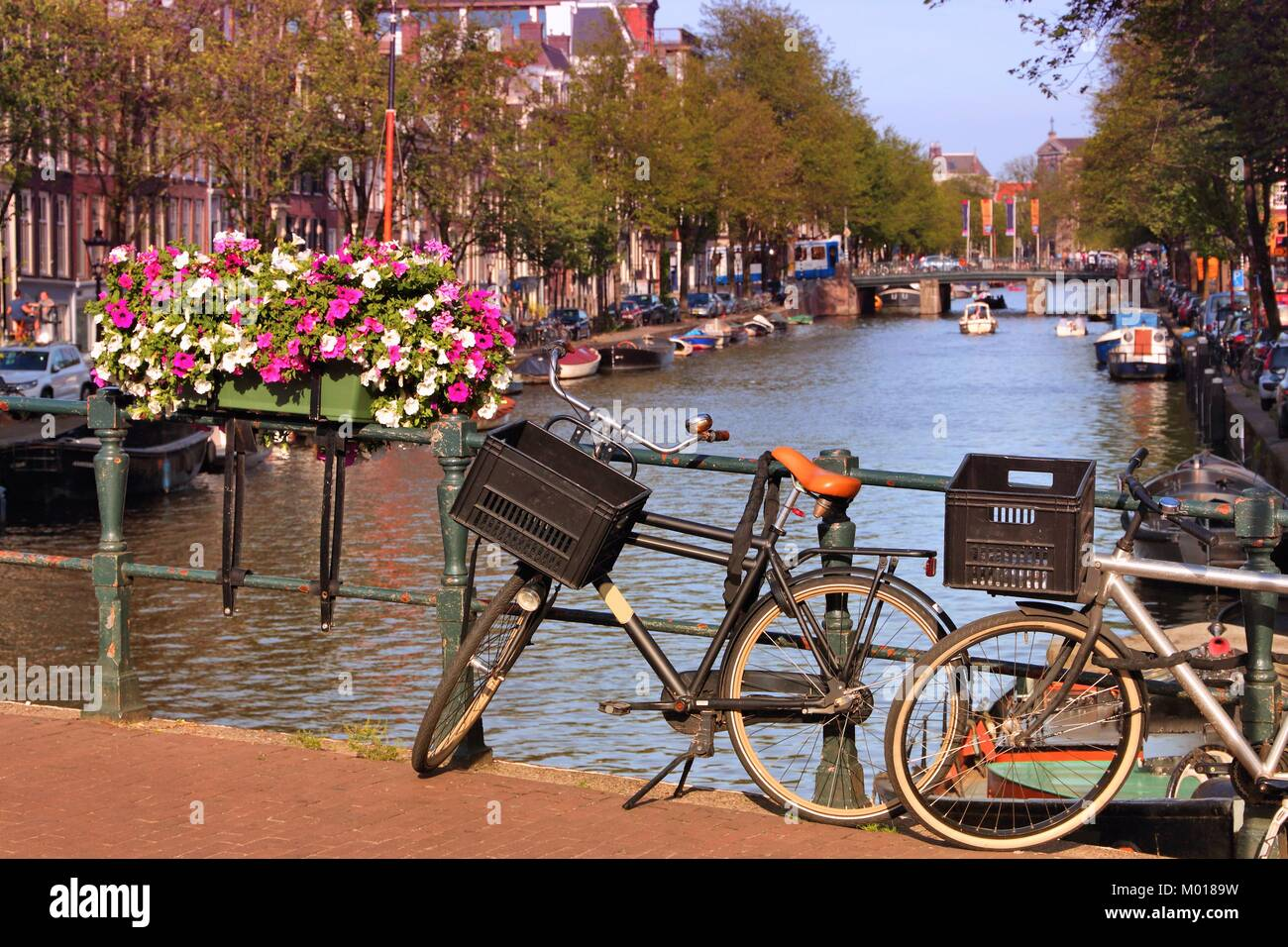 Prinsengracht Canal in Amsterdam, Netherlands. Bicycle parked on a bridge. - Stock Image