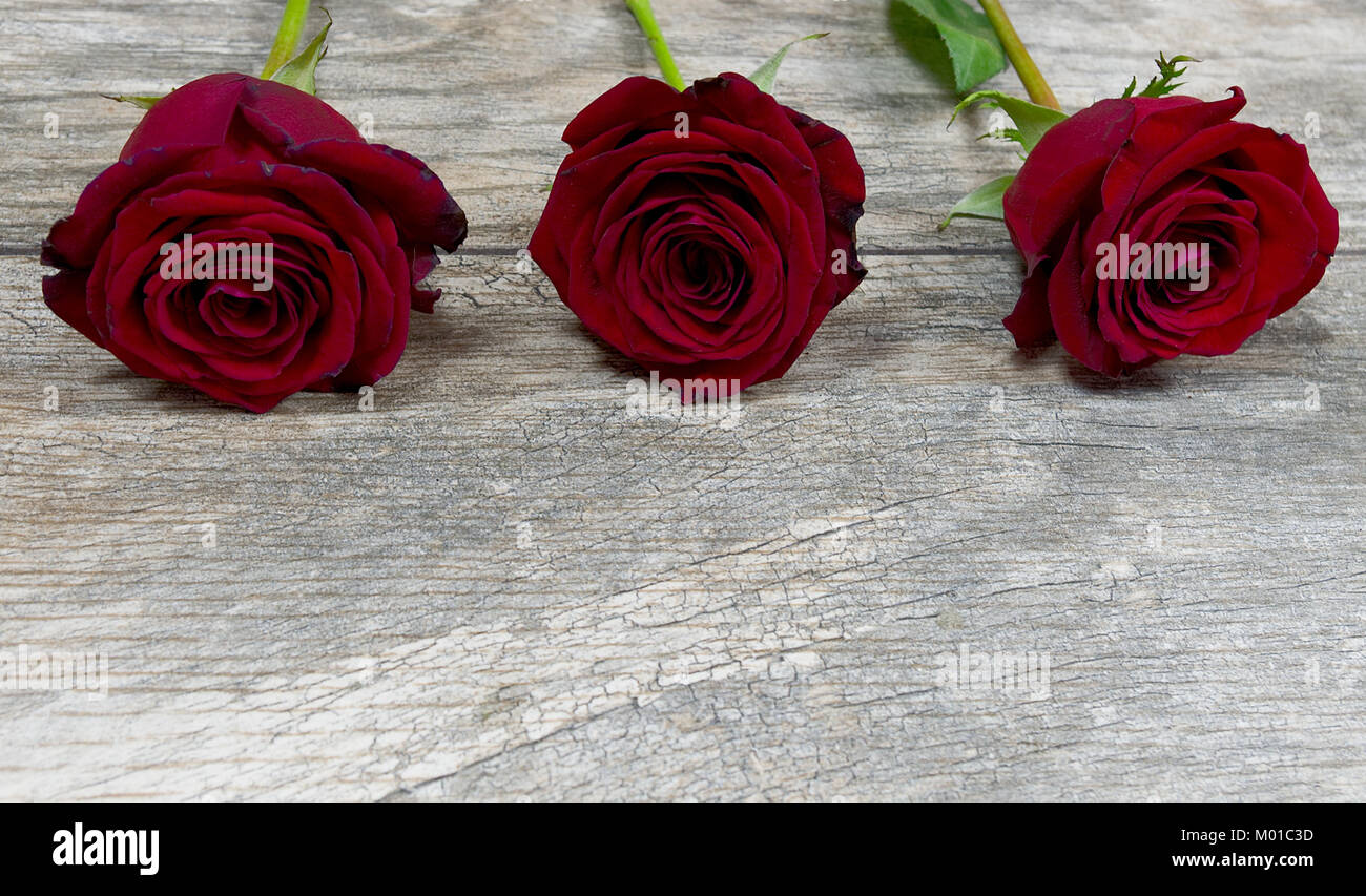 Three red roses on distressed wood - Stock Image