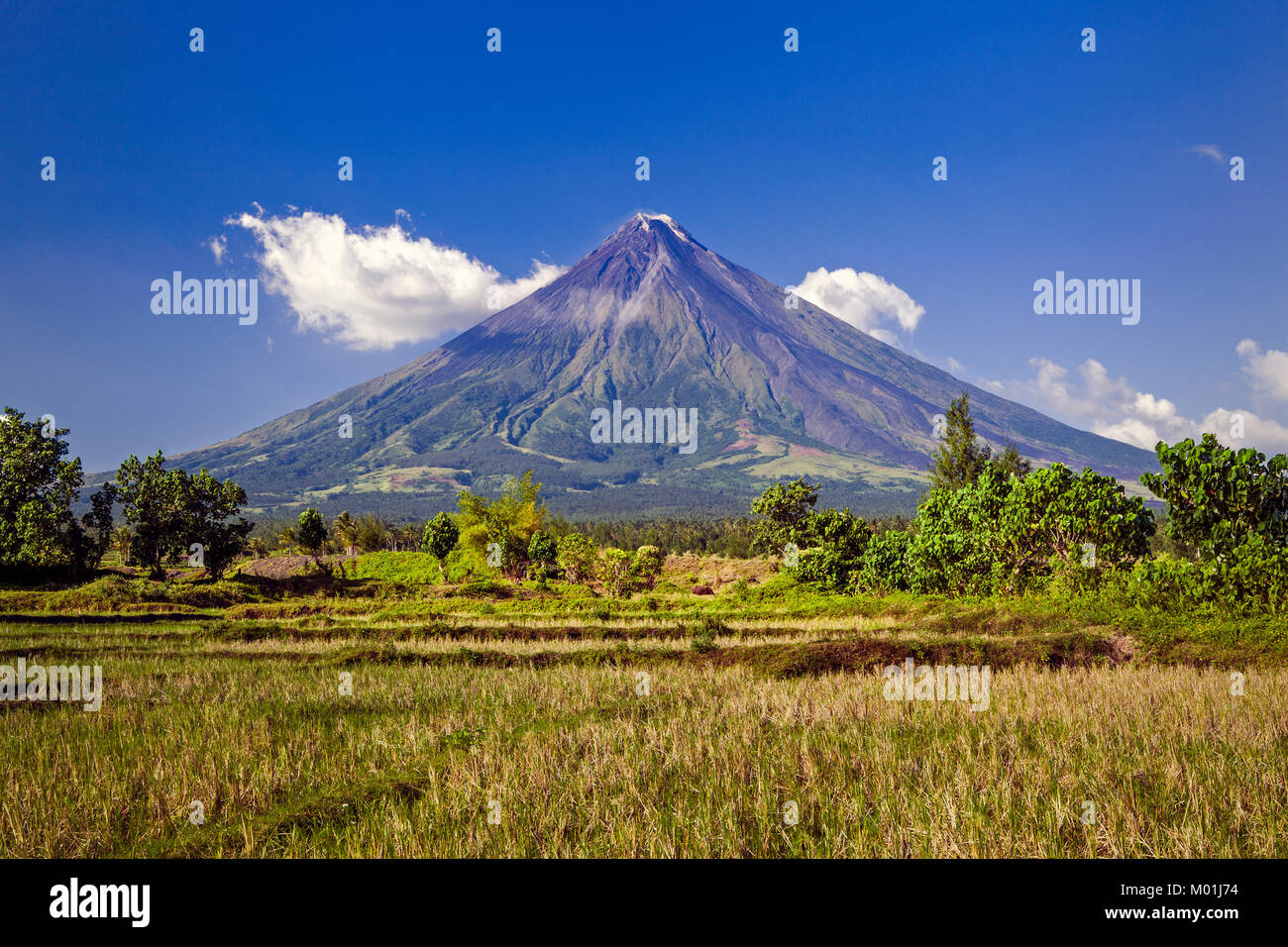 Mount Mayon Volcanois an active stratovolcano, in the province of Albay, Bicol, Philippines currently erupting and - Stock Image