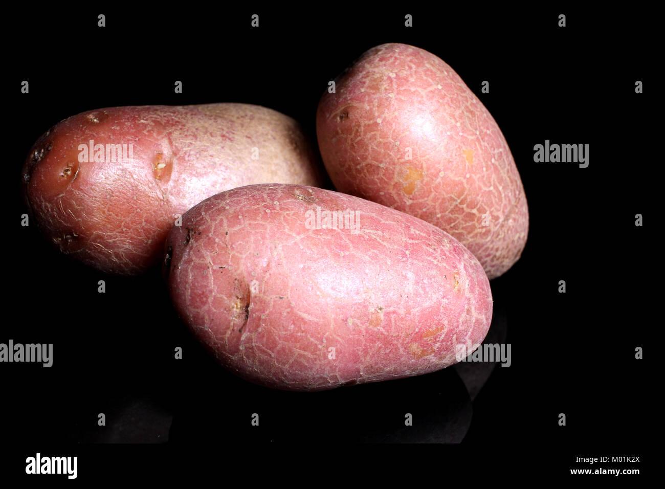 Potato potatos on black studio background. Food photos. - Stock Image