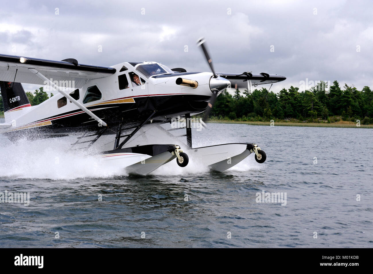 The de Havilland turbo beaver is an updated version of of the DHC-2 which has been a work horse in the Canadian - Stock Image