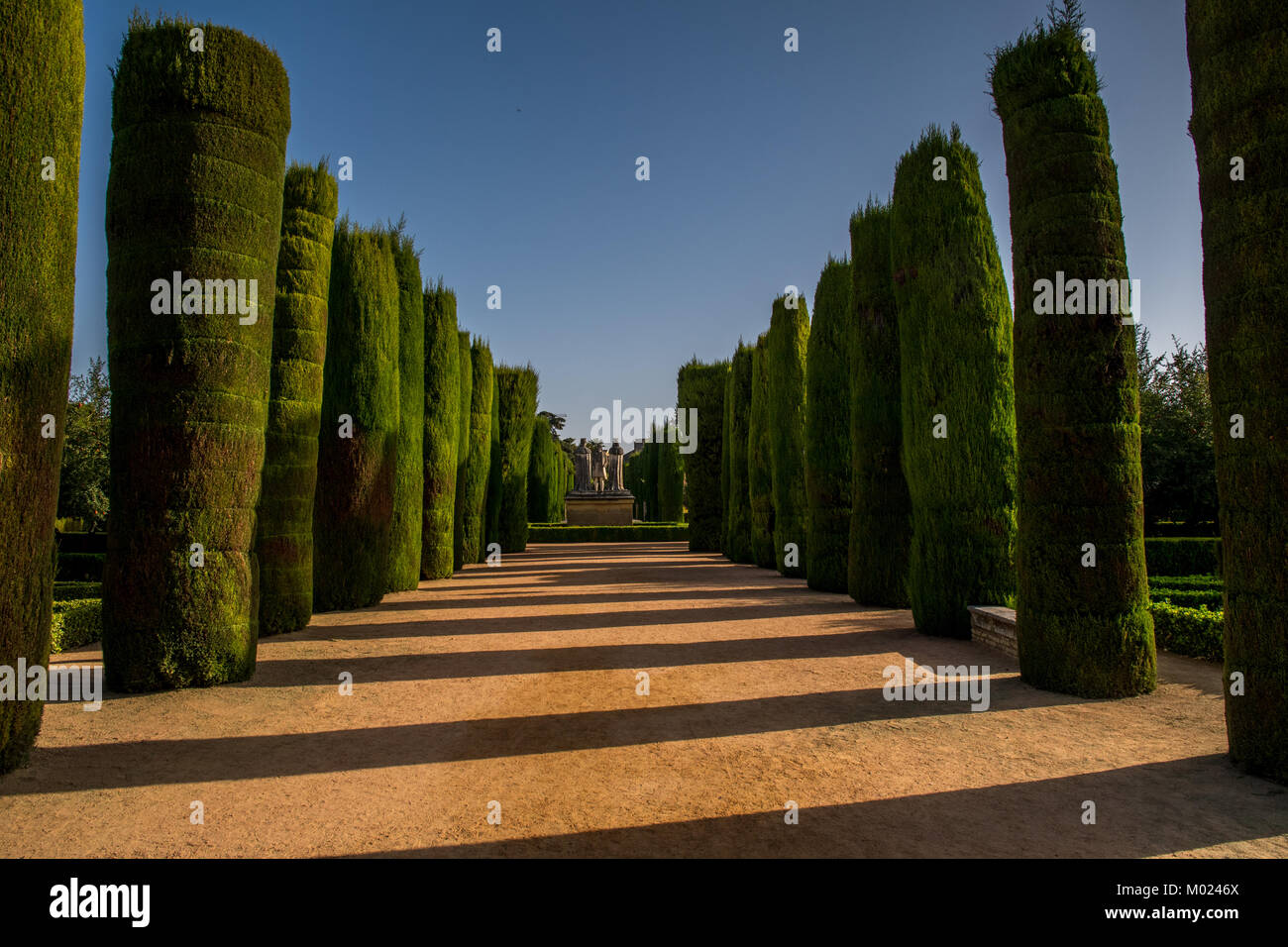 CORDOBA, ANDALUSIA / SPAIN - OCTOBER 14 2017:  GREEN TREES IN THE PARK - Stock Image