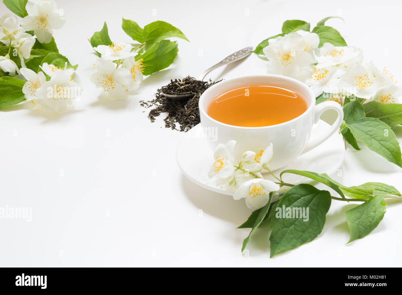 Jasmine Dry Green Tea Leaves With Fresh Jasmine Flowers And Cup Of