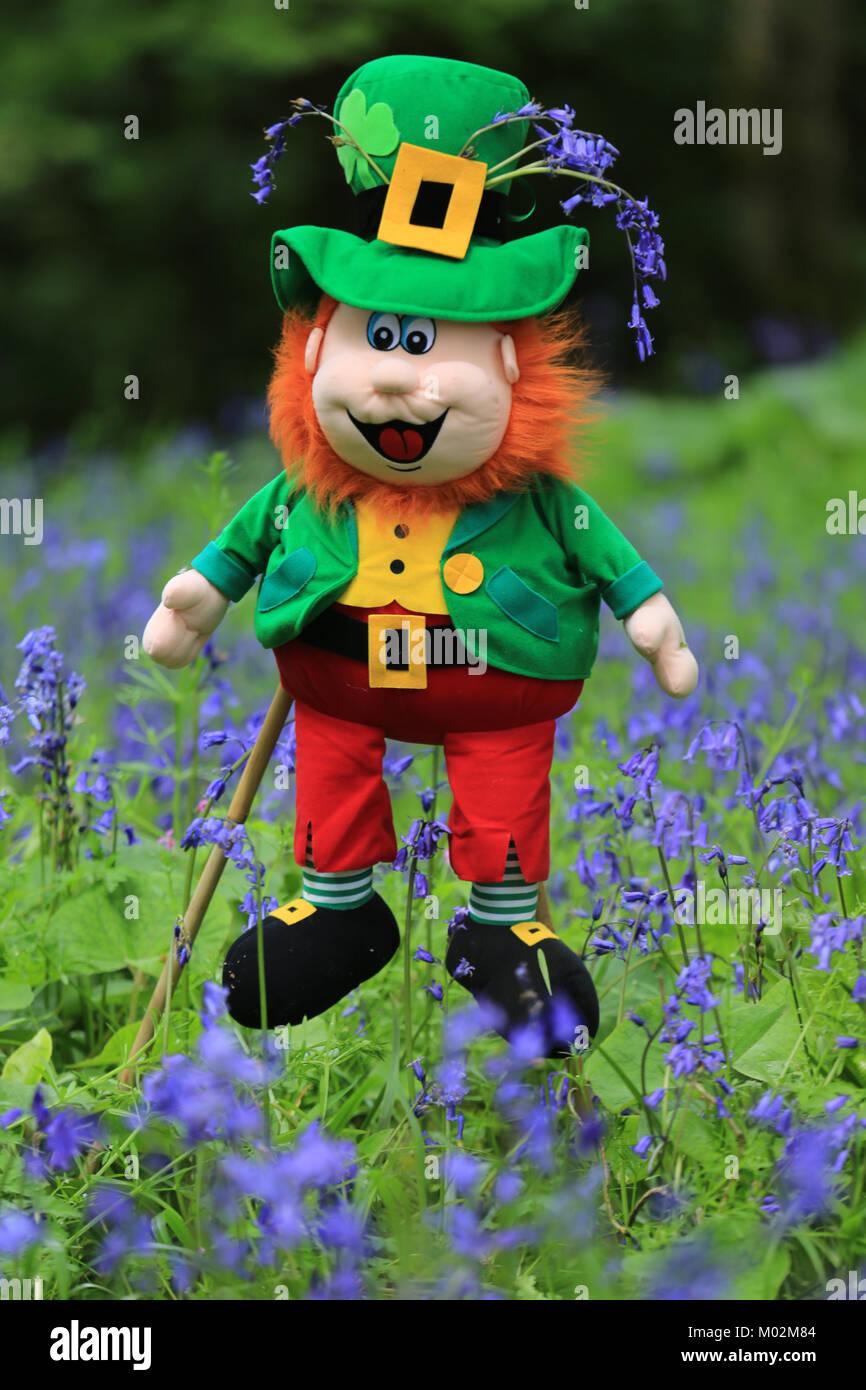 Leprechaun in a field of purple flowers in Ireland - Stock Image