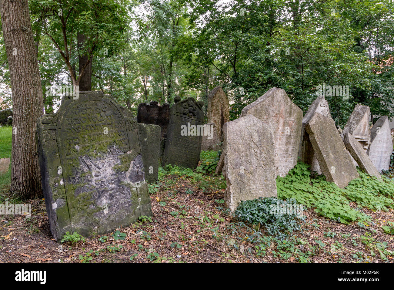 Thousands of crooked tombstones in the Old Jewish Cemetery , Prague, Czech Republic - Stock Image
