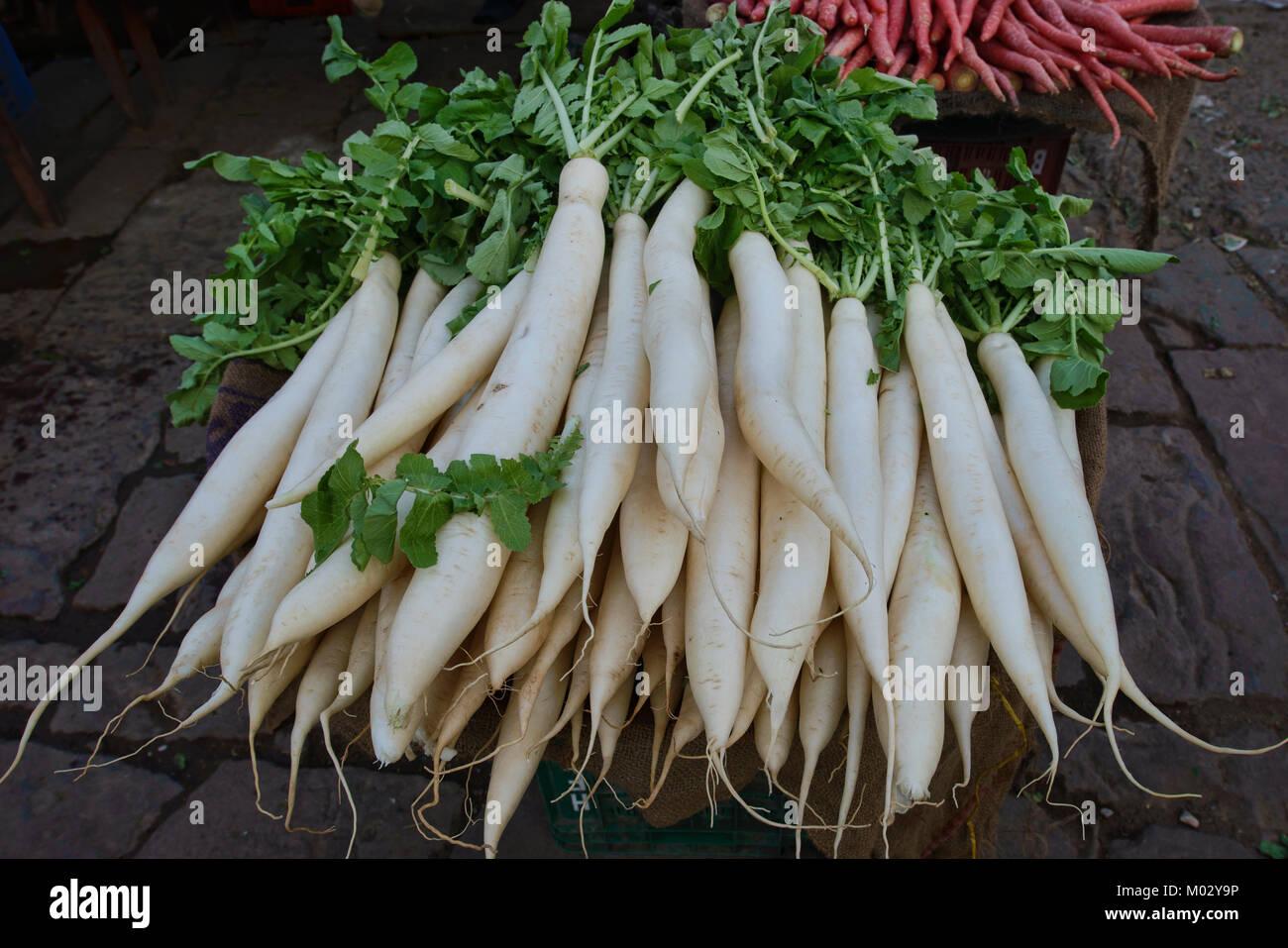 ndian White Radish, Mooli, Muli - Stock Image