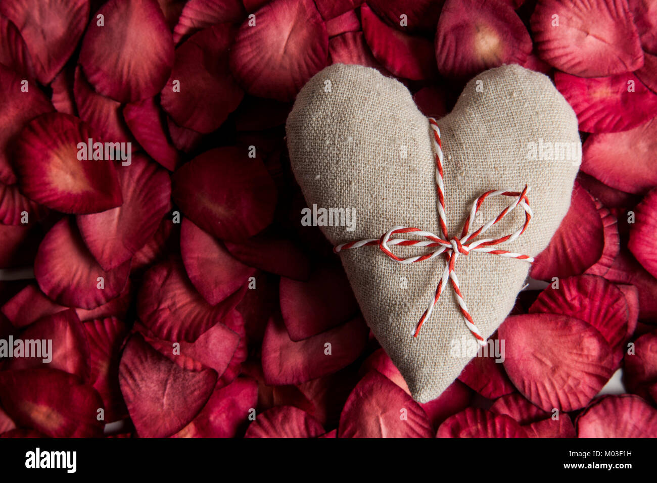 St Valentines day love heart and rose petals - Stock Image