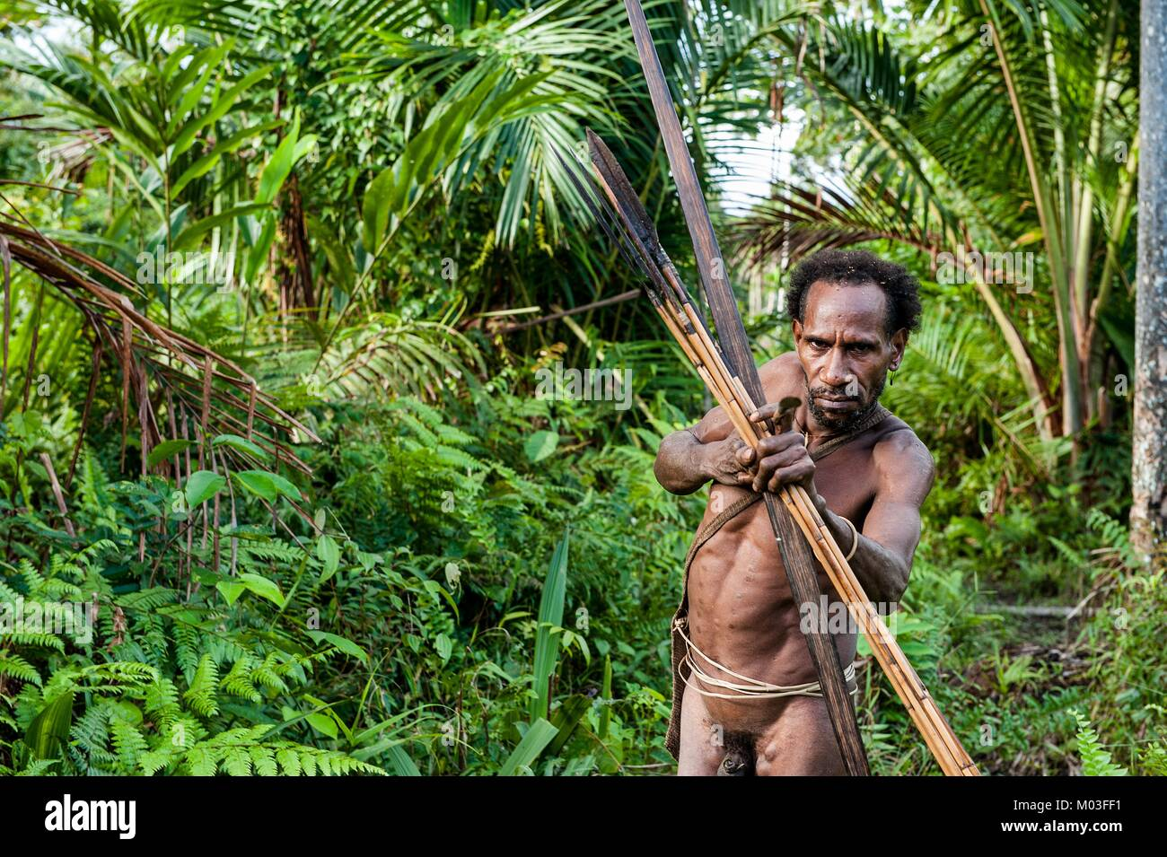 Korowai Tribe Stock Photos & Korowai Tribe Stock Images - Alamy