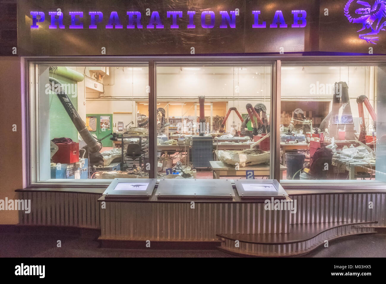Preparation Lab at the Royal Tyrrell Museum in Drumheller Alberta Canada - Stock Image