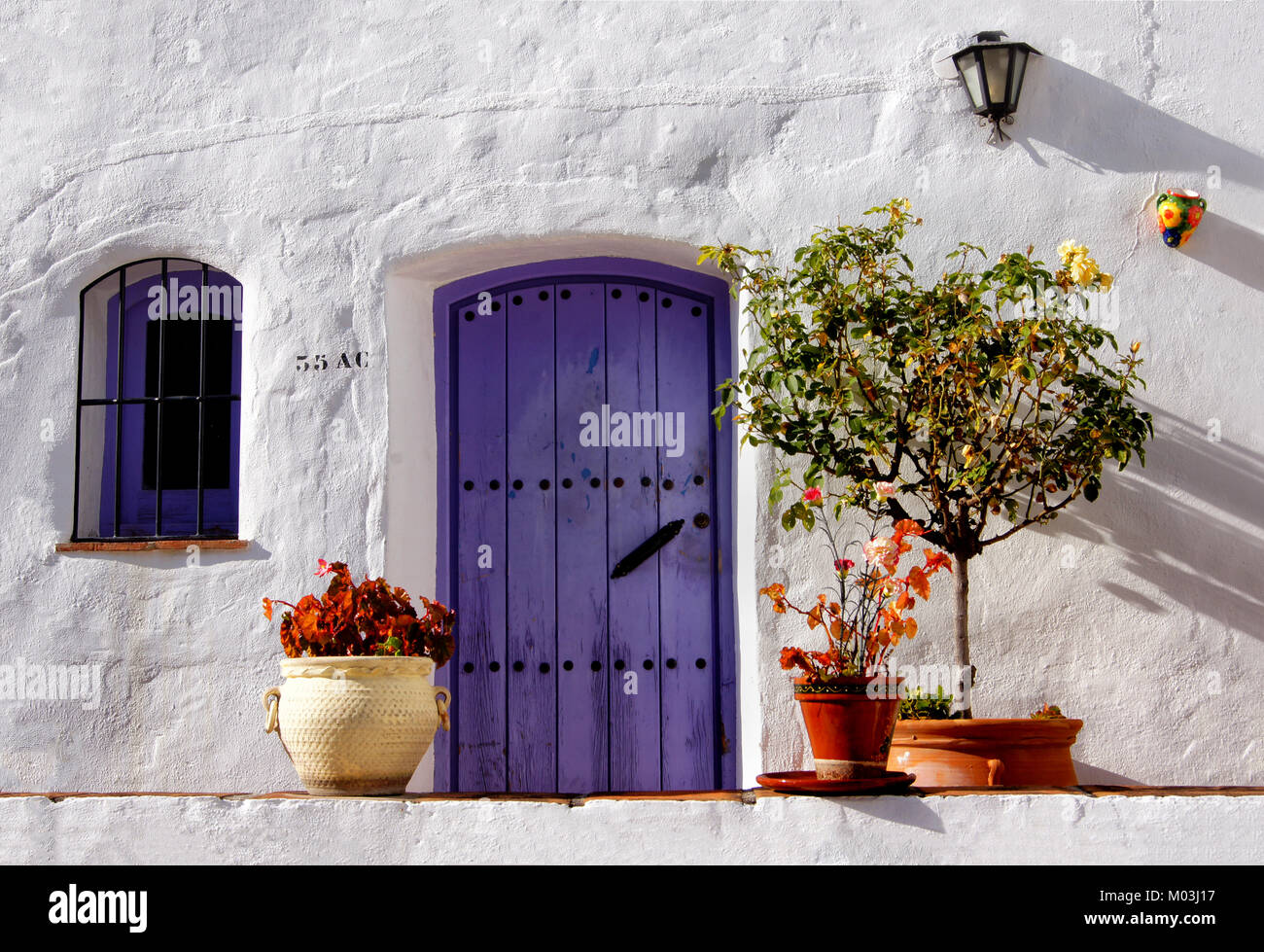Purple door and window, with plants around, set into white wall on a sunny day in Torrox Pueblo, Andalusia Spain - Stock Image