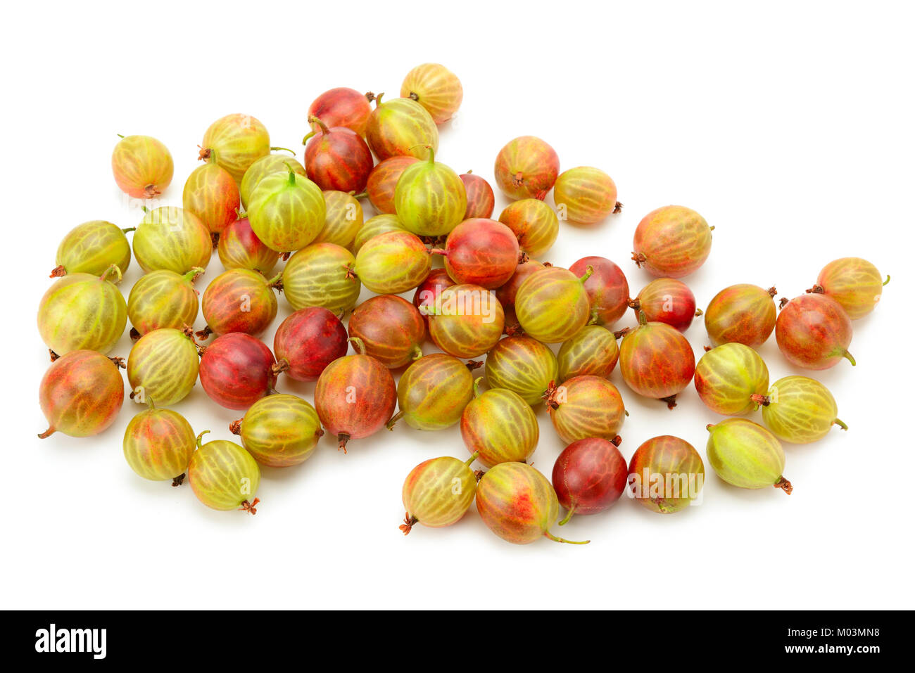 Big ripe gooseberries isolated on a white background - Stock Image