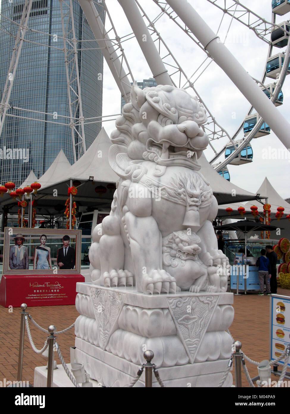 Asia, China, Hong Kong SAR female Dragon Dog - Stock Image