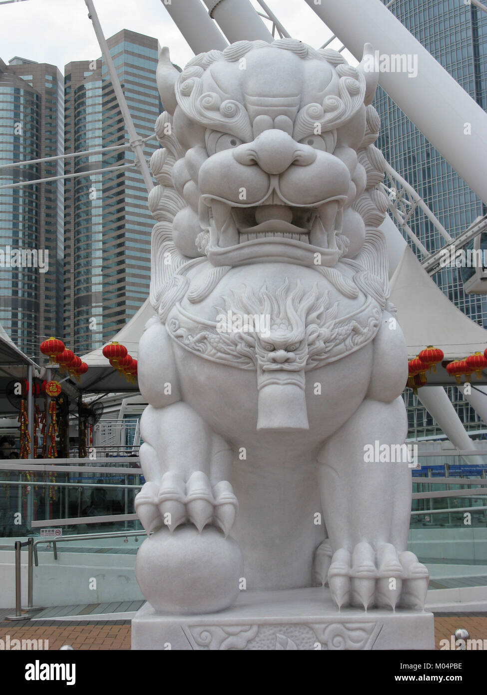 Asia, China, Hong Kong SAR male Dragon Dog - Stock Image