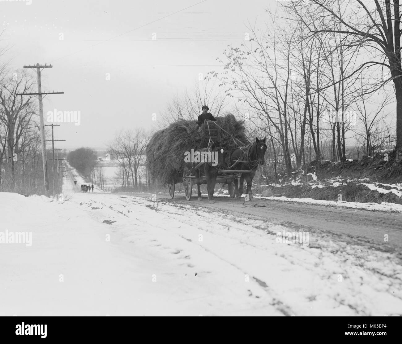 Hay wagons on bobsled road - Stock Image